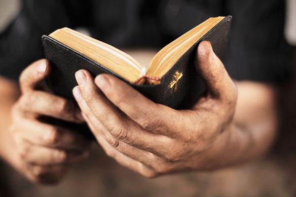 திருப்பலியில் முன்னுரை வாசகங்கள் மன்றாட்டுக்கள் வாசிக்க….